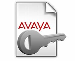 Avaya IP Office Select Edition R10+  Avaya IP Endpoint 1 PLDS License 307350