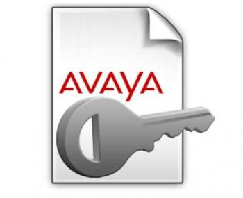IP Office R10 Avaya IP Endpoint 1 PLDS License (383110) For R10 & R11