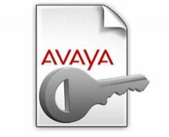 Avaya IP Office R9 IP500 T1 Additional 2CH PLDS License 273921